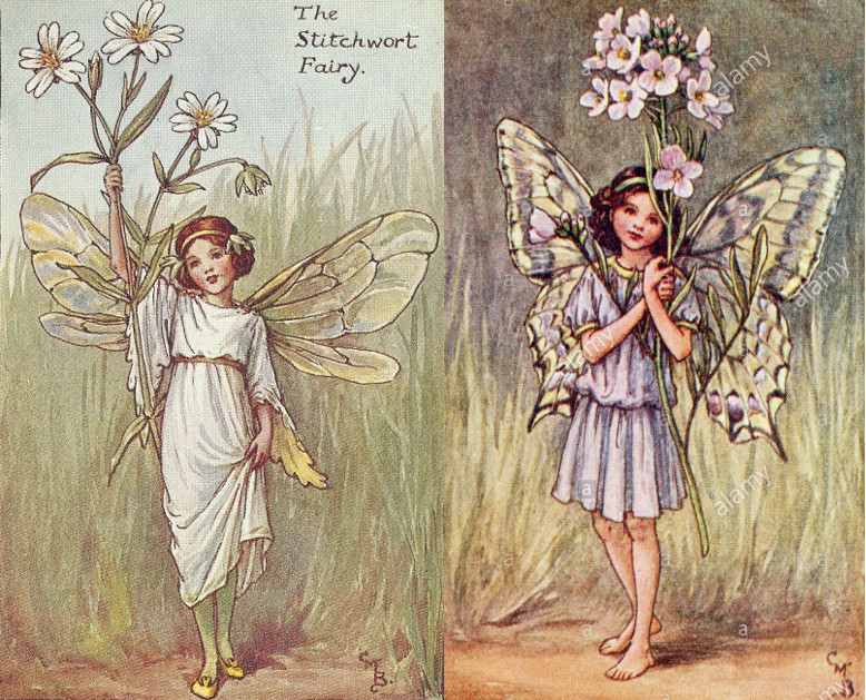 Cicely Mary Barker Flower Fairies