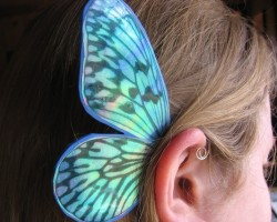 Детские каффы бабочки из Канады
